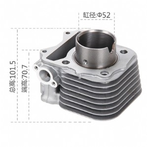 Motorcycle Cylinder Block, 新款海王星UA-T化油器版